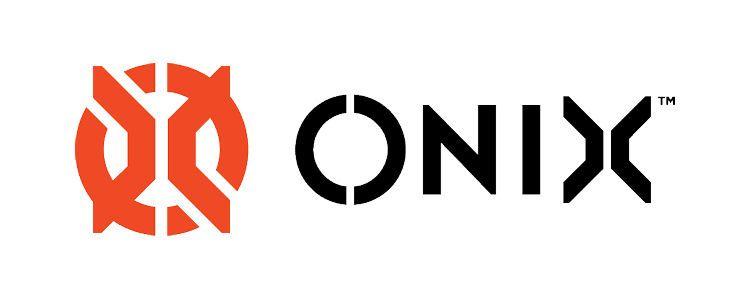 Engage Pickleball vs. Onix Pickleball: Onix History